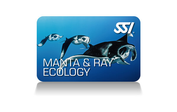 This program teaches you about the amazing variety of rays you can find in our oceans, how to recognize ray species by their unique physical characteristics and behaviors, and the vital role rays play in our ocean's ecosystems. You will learn how to safely interact with rays, and why living animals are worth more to our industry.